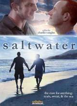 View Saltwater Trailer